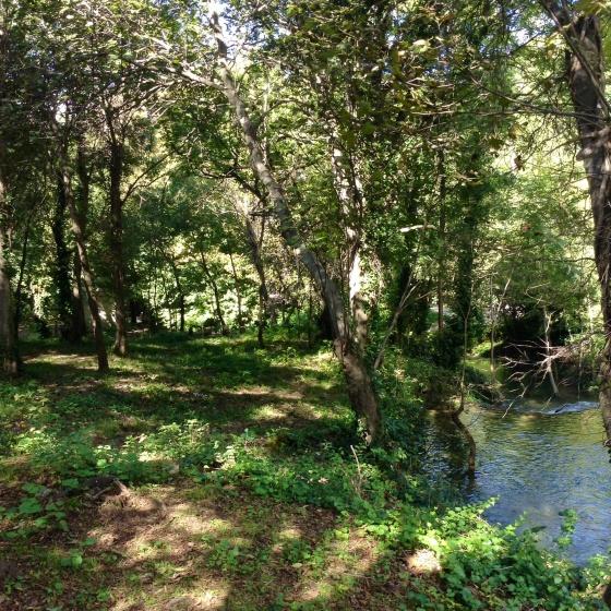Krka lake