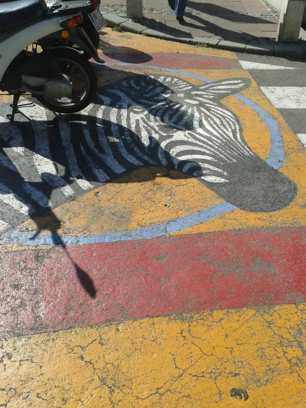 To a real zebra crossing below.